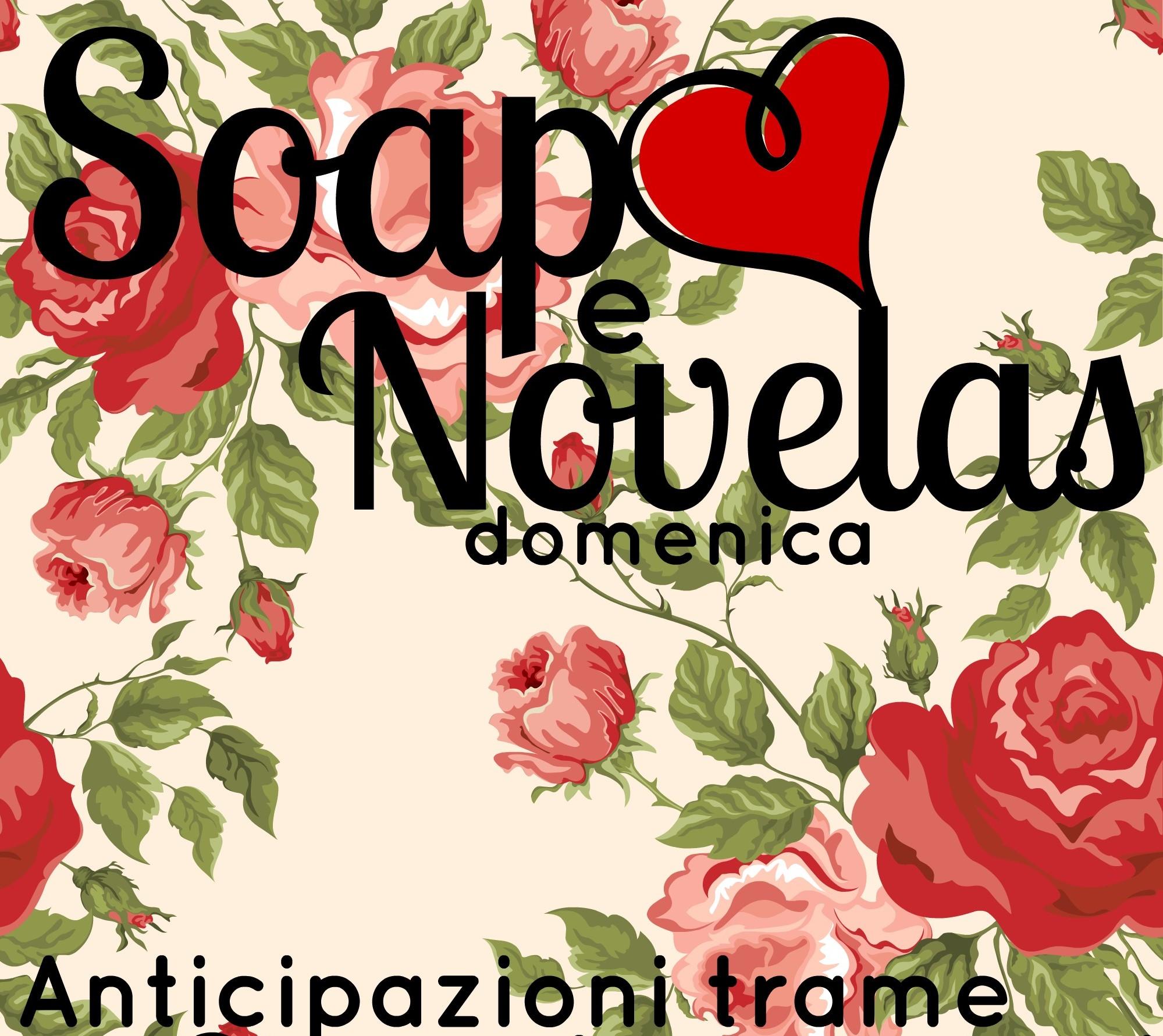SOAP&NOVELAS ANTICIPAZIONI TRAME 28 DICEMBRE-2 GENNAIO 2015: BEAUTIFUL, CENTOVETRINE, UN POSTO AL SOLE, IL SEGRETO, TEMPESTA D'AMORE Soap domenica (2)